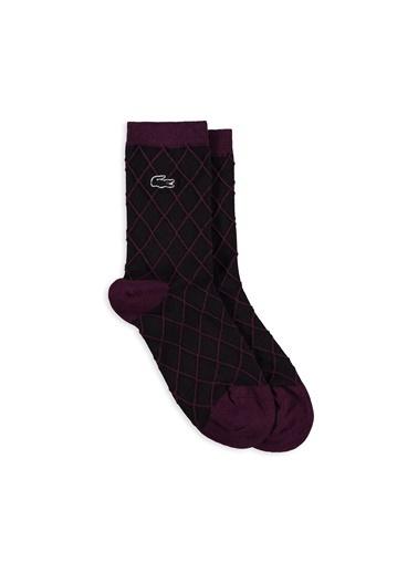 Lacoste Çorap Mor